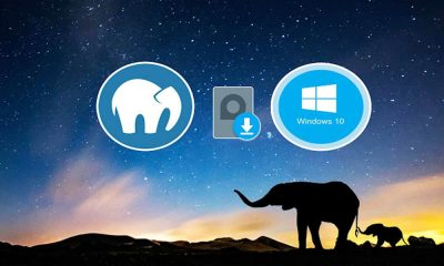 How To Install MAMP On Windows 10