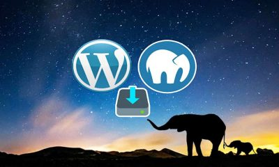 How To Install WordPress On MAMP Server In Windows 10