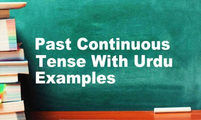 Past Continuous Tense With Urdu/English Examples