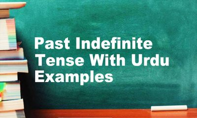 Past Indefinite Tense With Urdu/English Examples, Formula & Structure