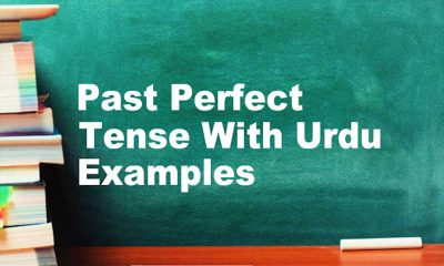 Past Perfect Tense With Urdu English Examples