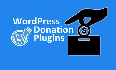 WordPress Donation Plugins