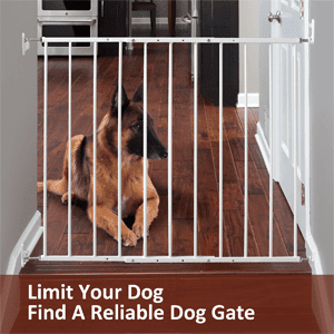 Find amazing and reliable dog gates