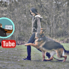 How A YouTube Channel & Blog On Pets Help In Making Money Online
