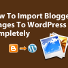 How To Import Blogger Images To WordPress Completely 0